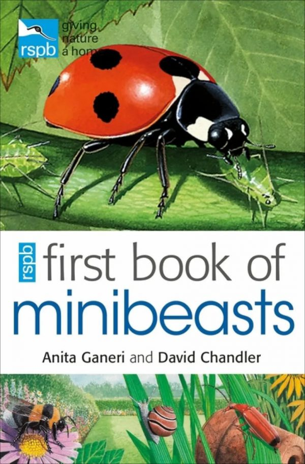 RSBP First book of minibeasts by Anita and David Chandler